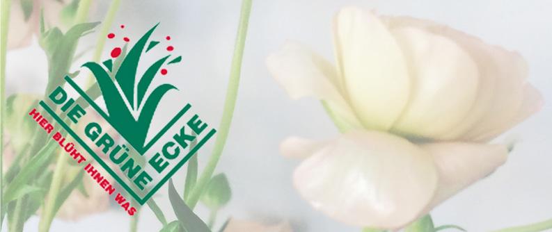 """29. Januar 2020: Wir über uns – Glückwunsch an unser Mitglied """"Die Grüne Ecke"""" zum 20-jährigen Jubiläum"""